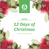 ENTER NOW! Kiwiherb's 12 Days of Christmas